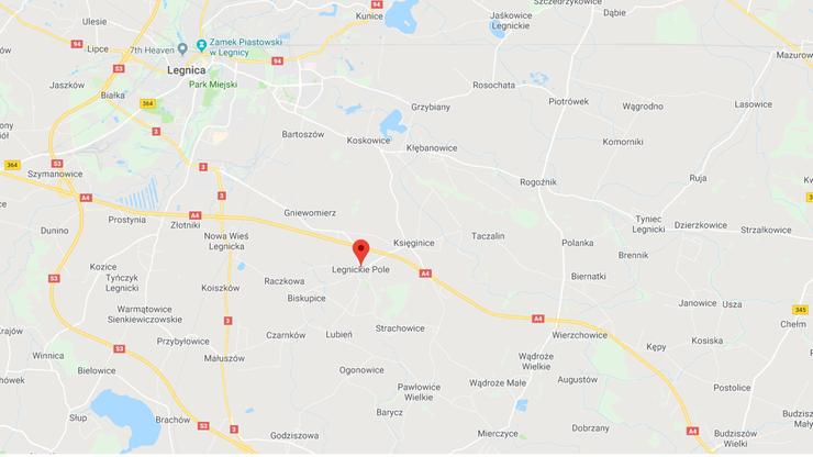 Skarb sprzed tysiąca lat znaleziony w Legnickim Polu
